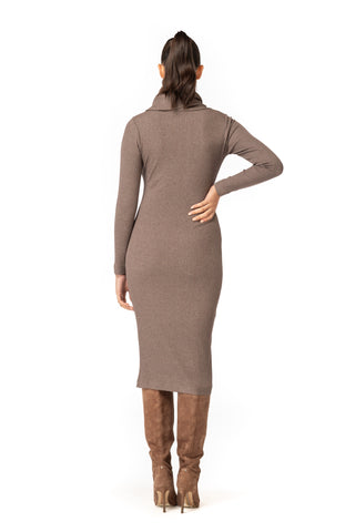 Cowl Turtleneck Dress
