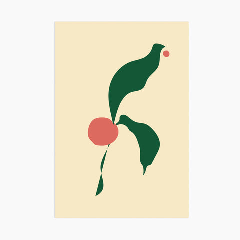 poketo abstract flora postcard flower modern