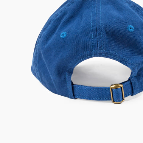 LA Arch Cap in Blue back