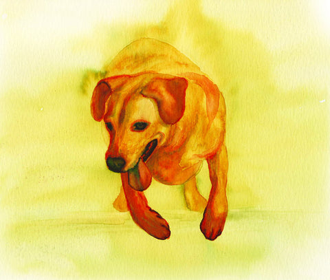 Labrador Retriever Dog Art Print