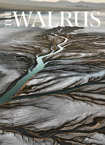 Water by Edward Burtynsky