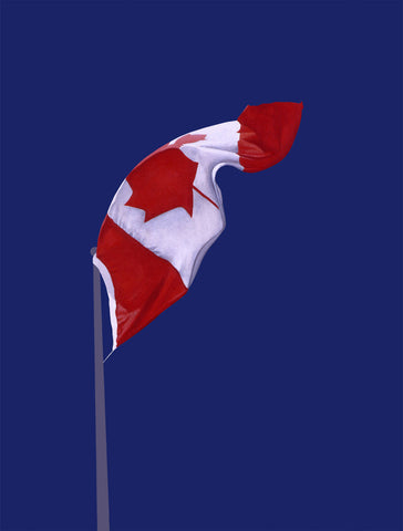 The Painted Flag by Charles Pachter