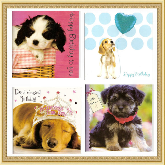 Stationery Dog Birthday Cards - Prince & Princess Designer Petwear