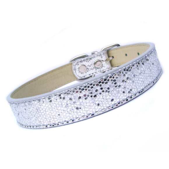 Dog Collars Disco Fever Dog Collar - Prince & Princess Designer Petwear