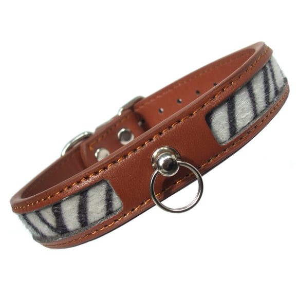 Dog Collars Safari Zebra Print Dog Collar - Prince & Princess Designer Petwear