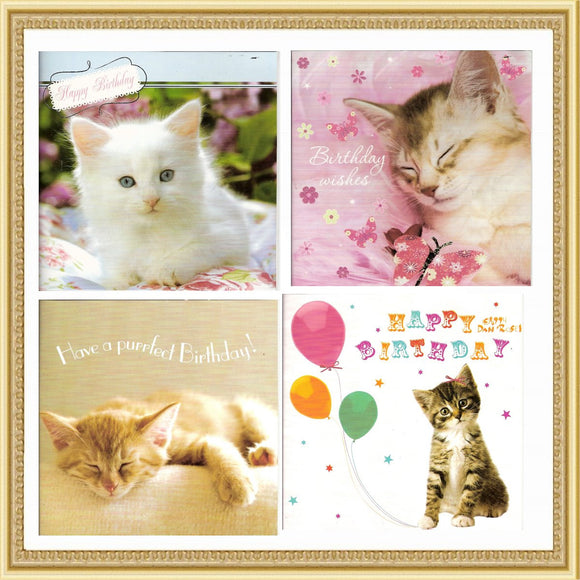 Stationery Cat Birthday Cards - Prince & Princess Designer Petwear
