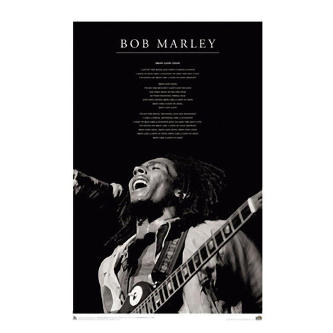 Bob Marley Iron Lion Wall Poster