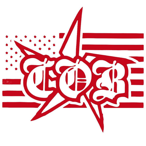 Children of Bodom Icon Rub-On Sticker - Red