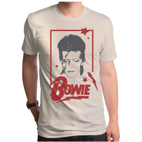 David Bowie Aladdin Frame Men's T-Shirt