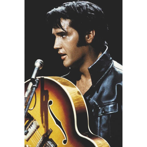 Elvis Presley The King Poster