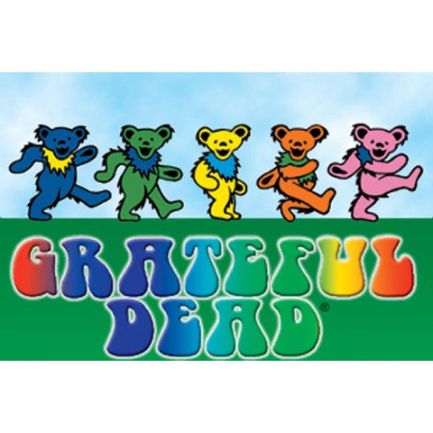 Grateful Dead Dancing Bear Magnet