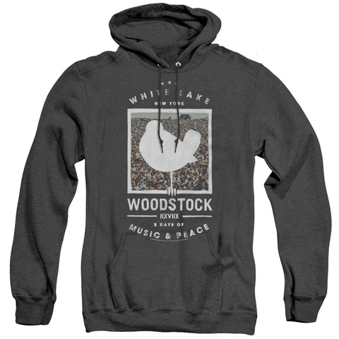 Woodstock Birds Eye View Men's Pull-Over Hoodie