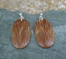 Indio Maiz Palm Tree Seed Earrings Earrings