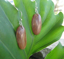 Indio Maiz Palm Tree Seed Earrings - Naturaleza Organic Jewelry & Wood Rings