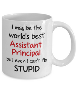 Assistant Principal Occupation Mug Funny World's Best Can't Fix Stupid Unique Novelty Birthday Christmas Gifts Ceramic Coffee Cup