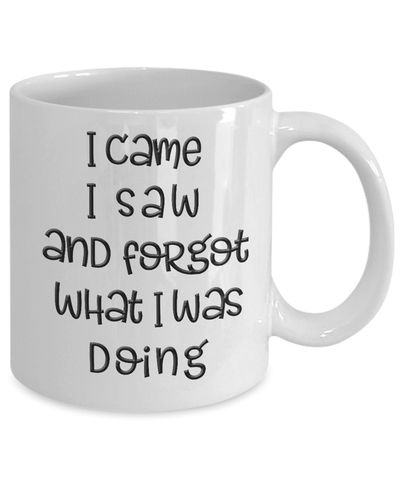 Funny Old Age Mug I Came I Saw I Forgot What I Was Doing Fun  Getting Old Coffee Mug