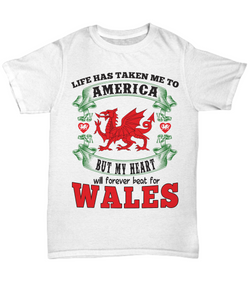 Life Took Me To America My Heart Belongs in Wales Shirt Gift Welsh Patriotism Novelty T-Shirt