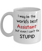 Assistant Occupation Mug Funny World's Best Can't Fix Stupid Unique Novelty Birthday Christmas Gifts Ceramic Coffee Cup