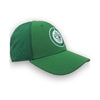 ST.PATRICKS DAY AP STRETCH CAP