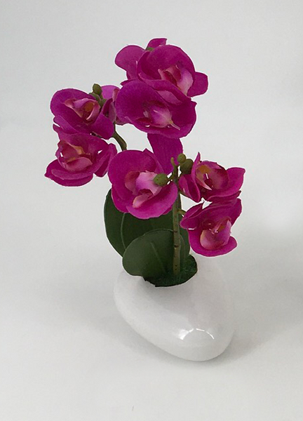 Assorted Orchids in White Oval Pot