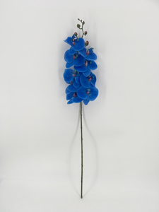Single Blue Orchid