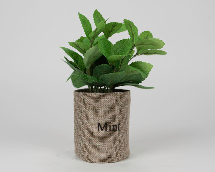 Mint Plant with Fabric Pot