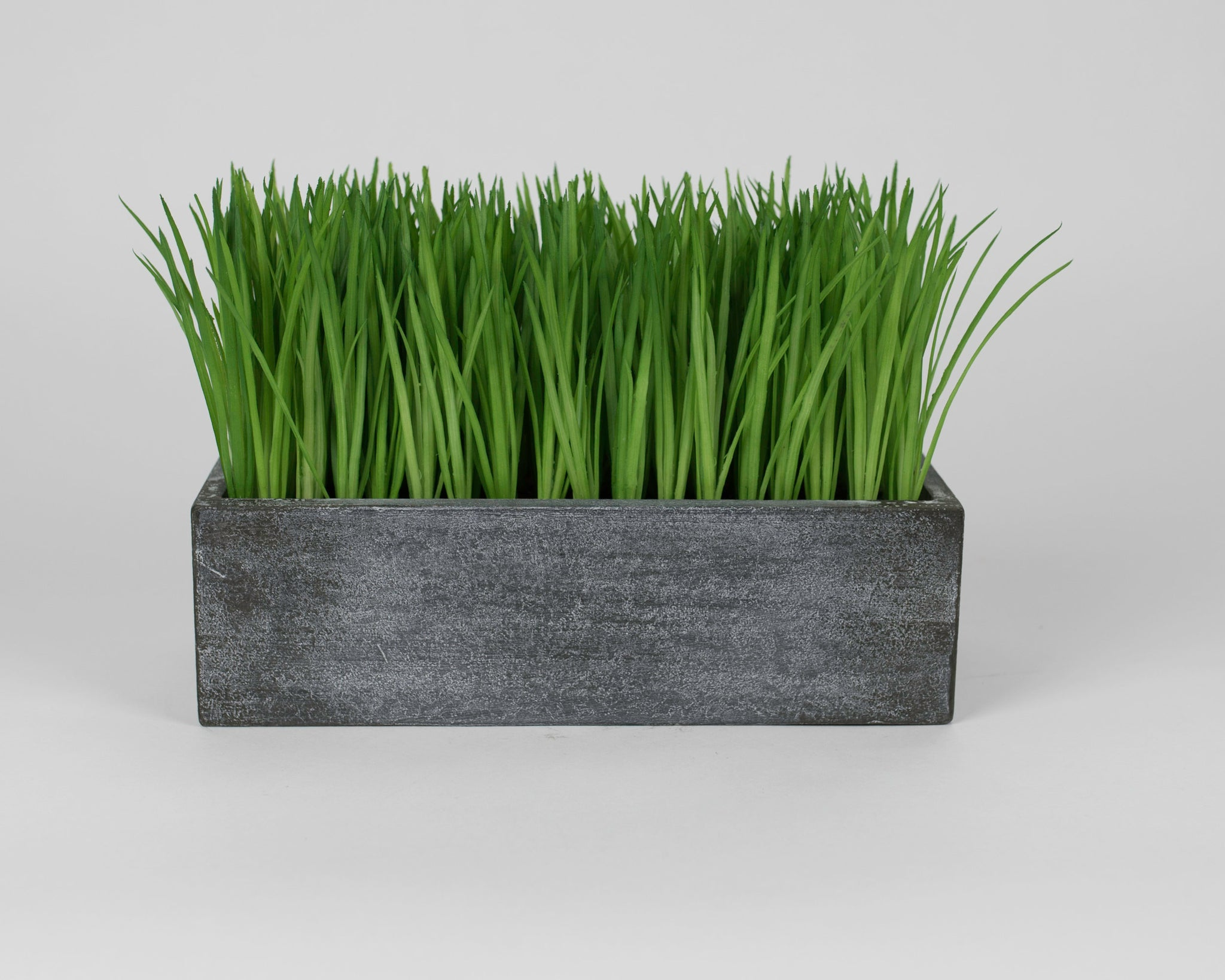 Grass in Wooden Holder