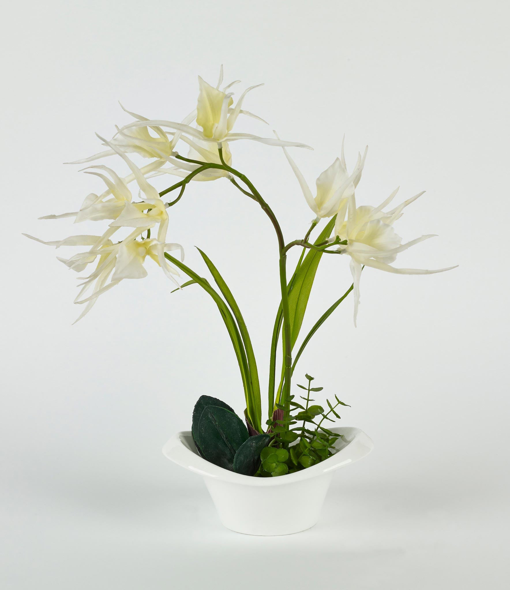 White Flowers in White Pot