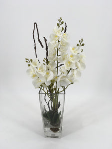 White Orchids in Glass Vase with Water