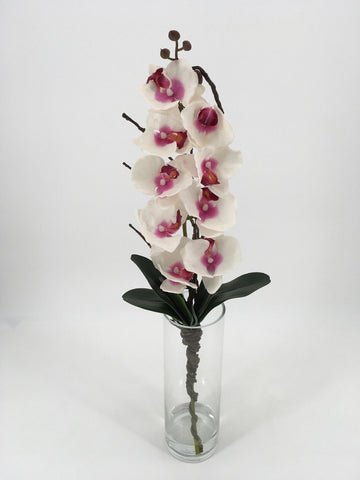 Tall Pink Orchids in Glass Vase