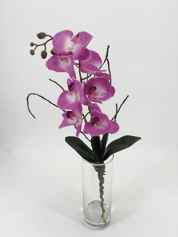 Purple Orchids in Tall Glass Vase