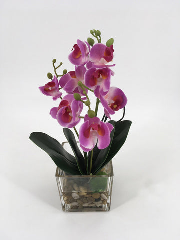 Purple Orchids in Glass Vase with Rocks