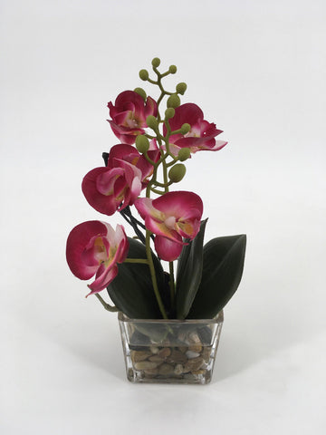 Pink Orchids in Square Glass Vase with Rocks