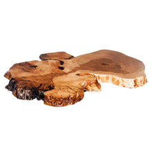 Sample of a birch burl prepared for a table top with a clear coat. 3/4 side view.