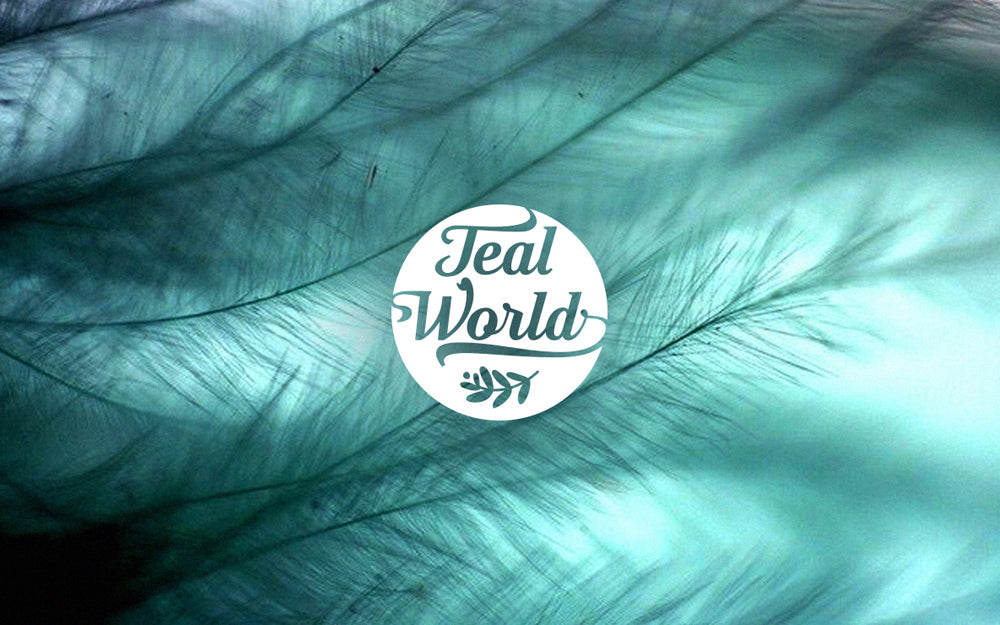Teal world logo
