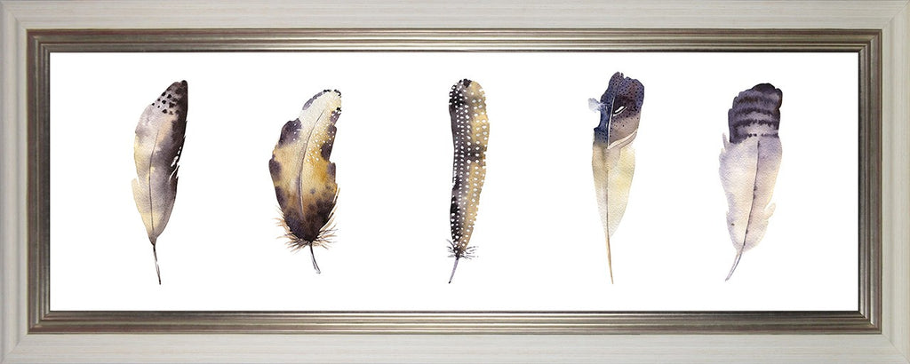 Watercolour Feathers II