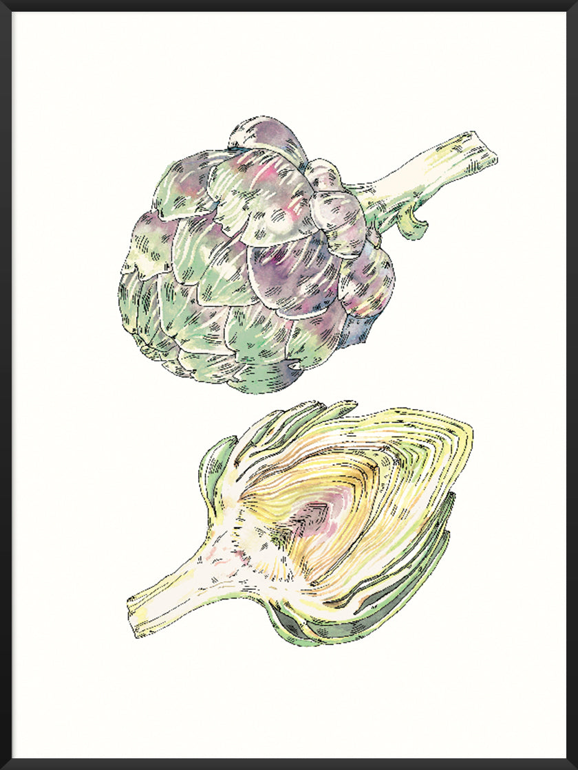 Vintage Hand Painted Artichoke - Poster | Project Nord