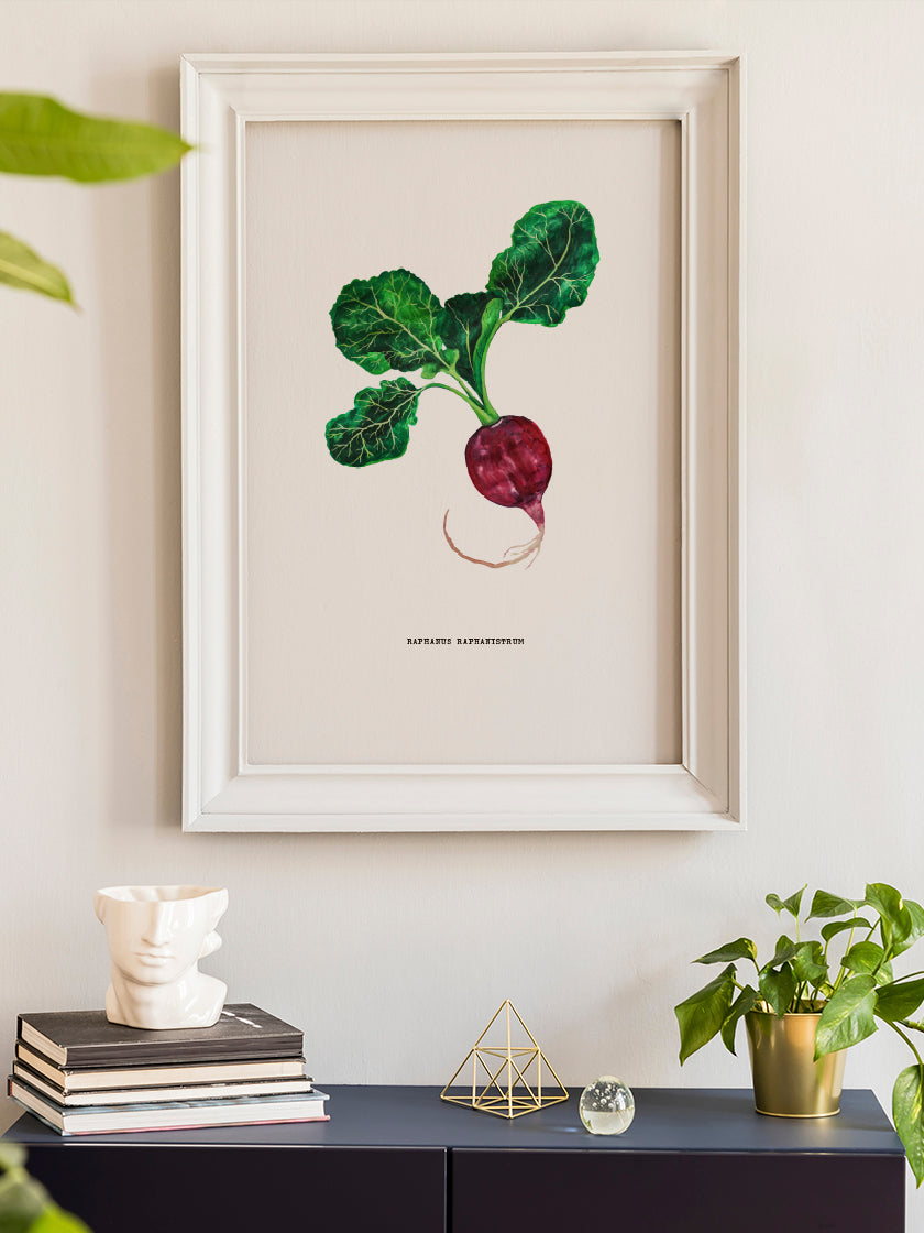 project-nord-vintage-botanical-radish-poster-in-interior-hallway