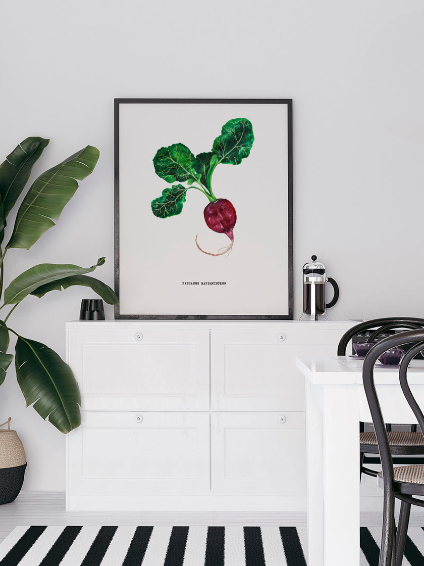 project-nord-vintage-botanical-radish-poster-in-interior-kitchen
