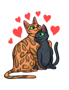 Valentines Day Cat Love