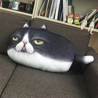 Emoji Cat Cushion