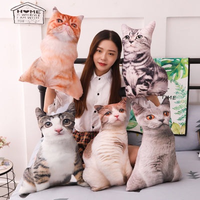 Cuteness Overload Cartoon Plush Cat Pillows