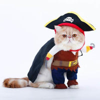 Funny Pet Caribbean Pirate Suit