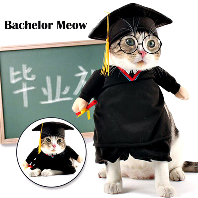 Funny  Cat Costumes Bachelor Cosplay Suit