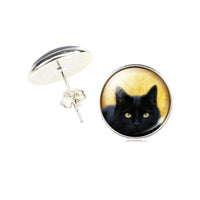 Black Cat Earrings For Women