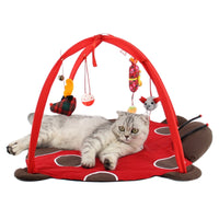 Cat Training Mobile Activity Playing Bed