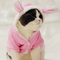 Funny Bunny Cat Clothes
