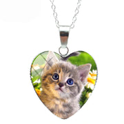 Blue Eyed Kitten In Flower Bed  Cat Heart Necklace