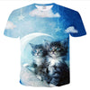 Maine Coon Kittens T Shirt