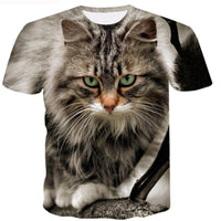 Maine Coon Cat T Shirt